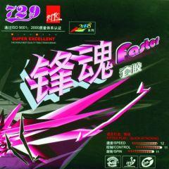 729 Faster Transcend Sponge